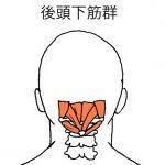 首の緊張をとり、全身のバランスを整える。