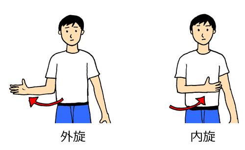 肩関節外旋内旋