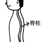 体の大黒柱である脊柱が安定してくると、肩こりや腰痛は軽減する。