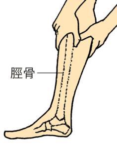 脛骨側ふくらはぎケア