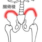 腰痛の改善、骨盤の痛みは腸骨稜をケアする