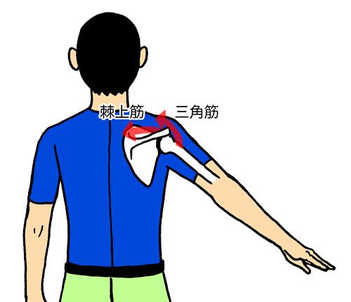 肩を上げる第1段階